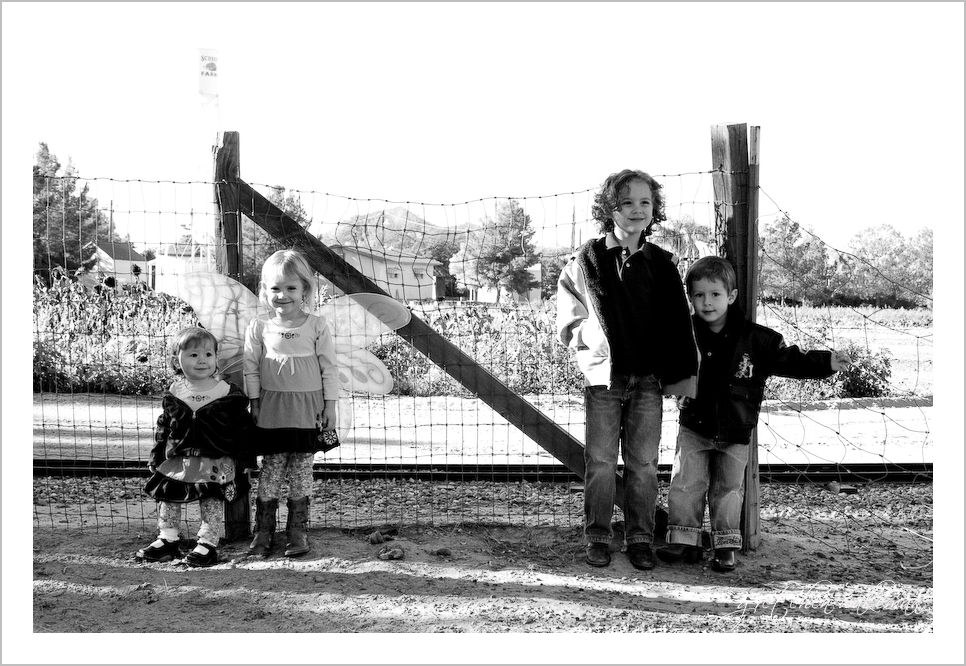 Schroder Family Blog-2