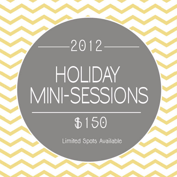 2012 Holiday Mini Sessions!