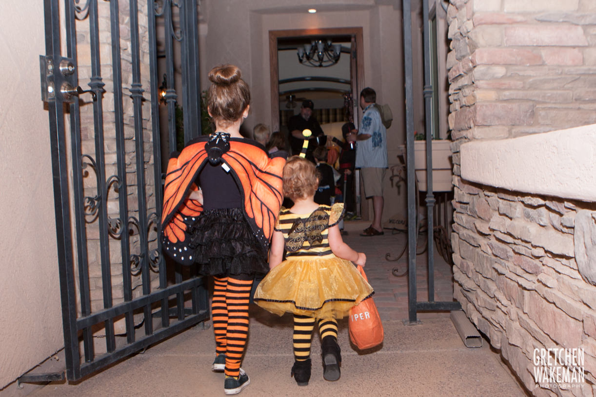 9 halloween bumblebee butterfly costume 1