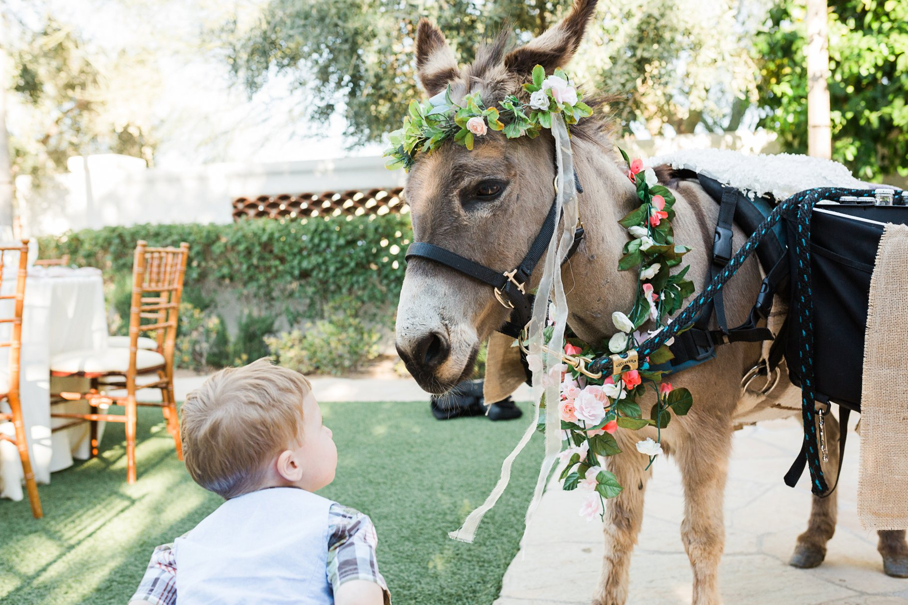 beer burro at wedding